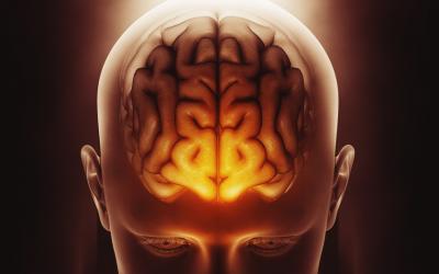 Dopamina. O que o trabalho e a alimentação têm a ver com ela?
