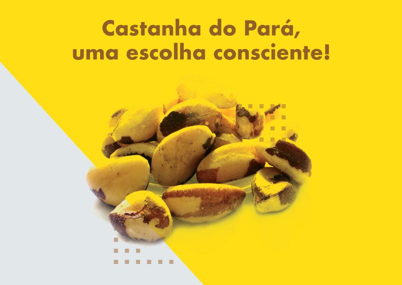 Castanha do Pará, uma escolha consciente!